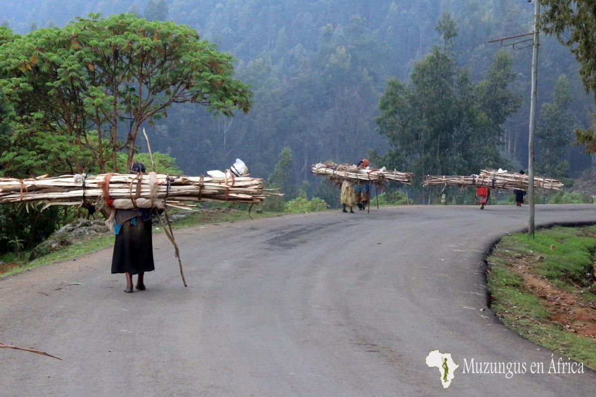 Mujeres bajan la colina de Entoto cargando leña / Adis Abeba (Etiopía) Junio de 2016