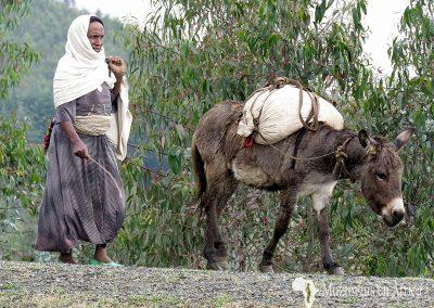 Mujer y burro en las Montañas Simien, Etiopía (23 de octubre de 2017) | © Juan Pablo Guevara